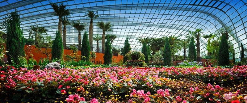 Singapore-Flower-Dome-
