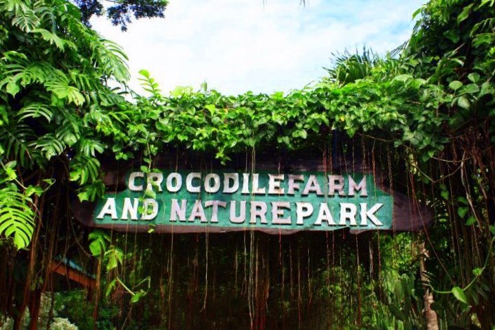 crocodile farm palawan
