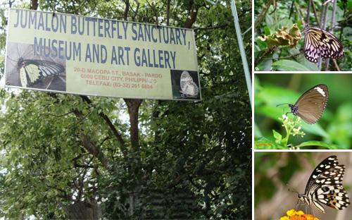 jumalonbutterflysanctuary